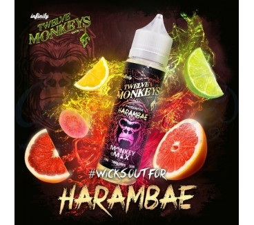 Harambae by Twelve Monkeys 50ml Shortfill