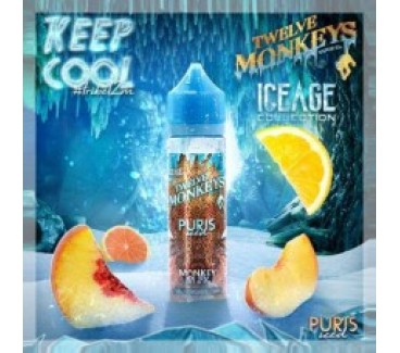 Puris ICED by Twelve Monkeys 50ml Shortfill