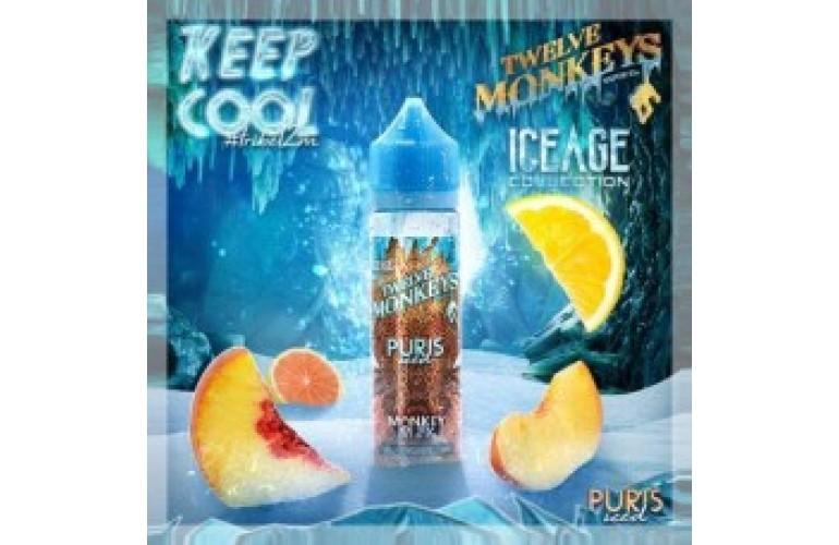 Puris ICED by Twelve Monkeys 50ml Shortfill