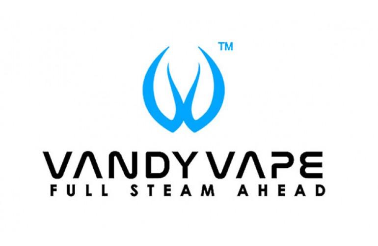 Vandy Vape Mesh coils
